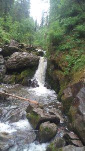 Горные реки Алтая