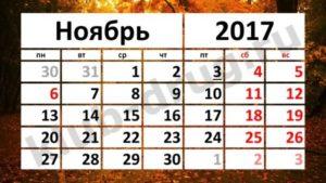 Ноябрь 2017, онлайн занятия Полины Суховой